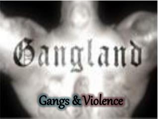 Gangs & Violence