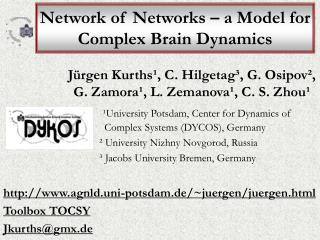 Network of Networks – a Model for Complex Brain Dynamics