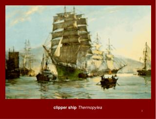 clipper ship  Thermopylea