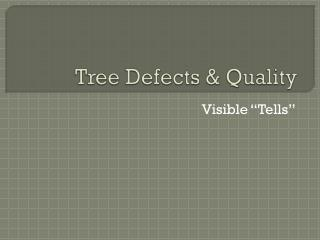 Tree Defects & Quality