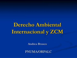 Derecho Ambiental Internacional y ZCM Andrea Brusco