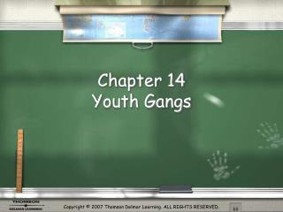 Chapter 14  Youth Gangs