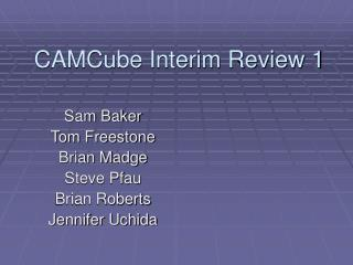 CAMCube Interim Review 1