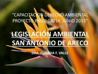 """""""CAPACITACION DERECHO AMBIENTAL PROYECTO PNUD 08014   JUNIO 2013"""""""