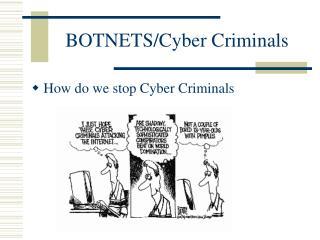 BOTNETS/Cyber Criminals