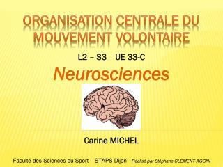 Organisation centrale du  mouvement volontaire