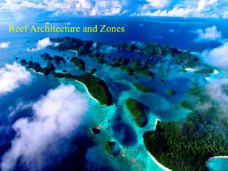 Reef Architecture and Zones