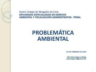 PROBLEMÁTICA AMBIENTAL 22 DE FEBRERO DE 2014 Helí  Johan Zegarra Aliaga johanzegarra@gmail