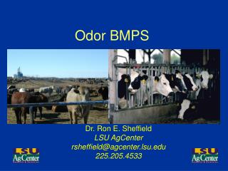 Odor BMPS