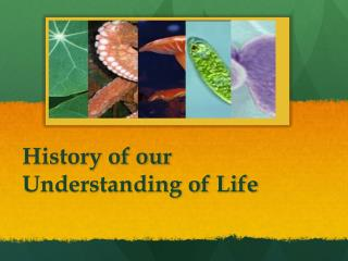 History of our Understanding of Life