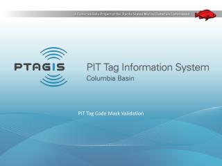 PIT Tag Code Mask Validation