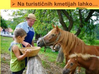 Na turističnih kmetijah lahko…