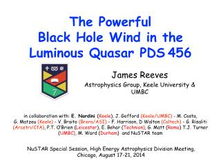 The Powerful  Black Hole Wind in the  Luminous Quasar PDS 456