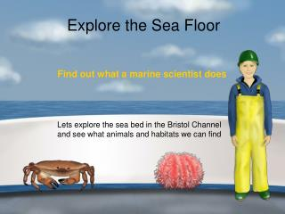 Explore the Sea Floor