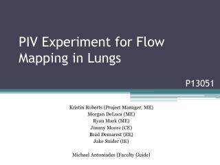 PIV Experiment for Flow Mapping in Lungs