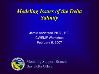 Modeling Issues of the Delta Salinity