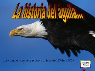 La historia del águila...
