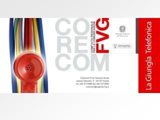 Una delle più importanti tra le attività svolte dal     CORECOM FVG