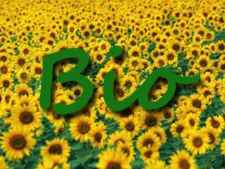 O que é a agricultura biológica?