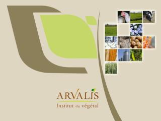« Agroécologie » : quelle réalité, et quelle stratégie pour ARVALIS