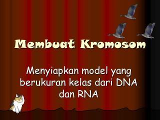 Membuat Kromosom
