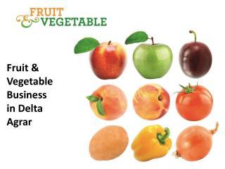 Fruit &  Vegetable  Business i n Delta Agrar