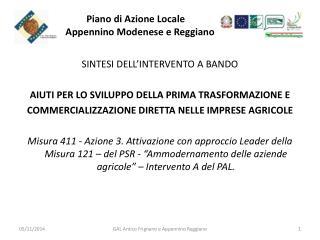 Piano di Azione Locale        Appennino Modenese e Reggiano