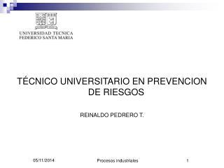 TÉCNICO UNIVERSITARIO EN PREVENCION DE RIESGOS REINALDO PEDRERO T.