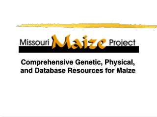 Comprehensive Genetic, Physical, and Database Resources for Maize