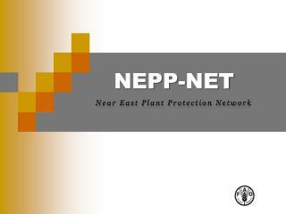 NEPP-NET