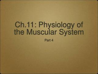 Ch.11: Physiology of the Muscular System