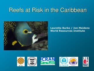 Reefs at Risk in the Caribbean
