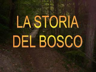 LA STORIA DEL BOSCO