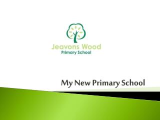 My New Primary School