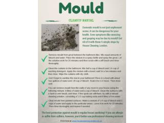 Mould  - cleanup manual
