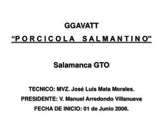 """GGAVATT """"P O R C I C O L A    S A L M A N T I N O"""" Salamanca GTO"""