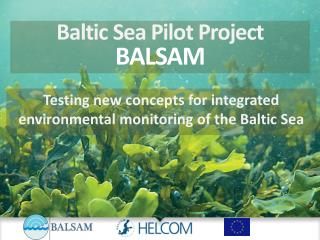 Baltic Sea Pilot Project  BALSAM