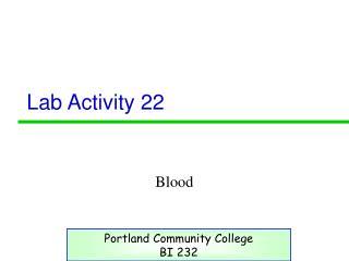 Lab Activity 22