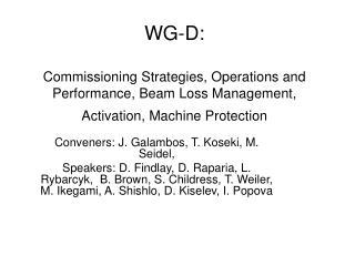 Conveners: J. Galambos, T. Koseki, M. Seidel,