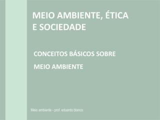 MEIO AMBIENTE, �TICA E  SOCIEDADE