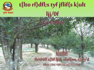 t[ lto rf } dfl;s tyf jflif {s  k|ult ljj /0f cf =j =  @)&).&!