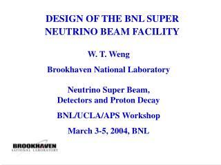 DESIGN OF THE BNL SUPER NEUTRINO BEAM FACILITY
