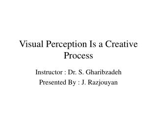 Visual Perception Is a Creative Process