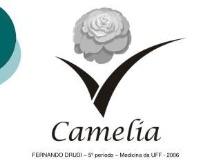 FERNANDO DRUDI � 5� per�odo � Medicina da UFF - 2006