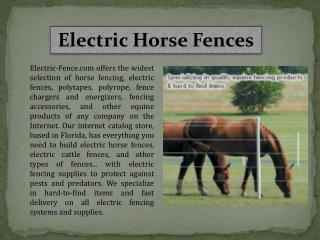Electric Horse Fences
