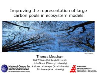 Improving the representation of large carbon pools in ecosystem models