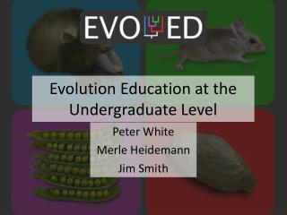 Evolution Education at the  Undergraduate Level
