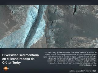 Diversidad sedimentaria en el lecho rocoso del Cráter Terby