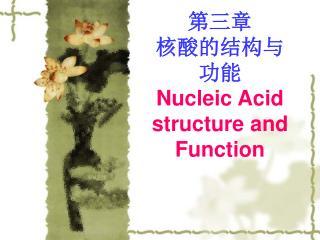 第三章 核酸的结构与 功能 Nucleic Acid structure and Function