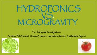 Hydroponics vs .  microgravity